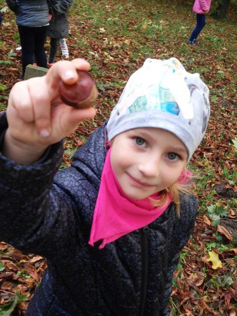 Dzieci zbierają kasztany w parku