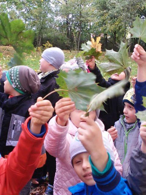 Dzieci zbierają liście w parku