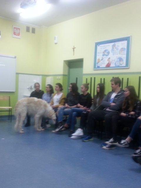 Fotorelacja ze szkolenia - Komunikacja człowieka z psem