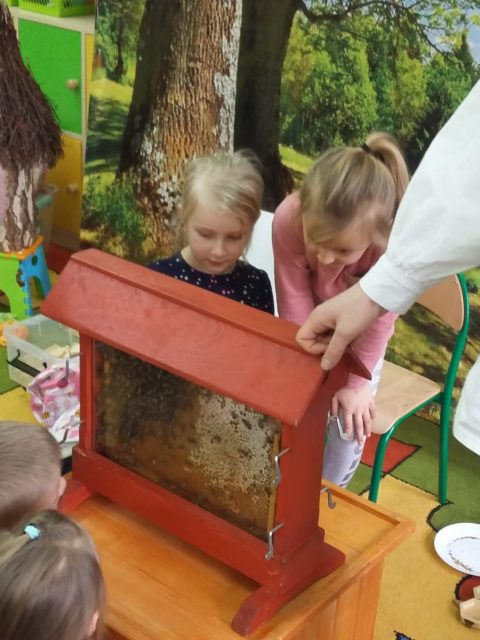 Fotorelacja z wizyty pszczelarza
