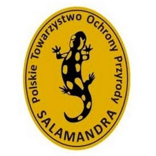 logo: Polskie Towarzystwo Ochrony Przyrody Salamandra